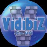 Vidibiz 2015 Banner 3